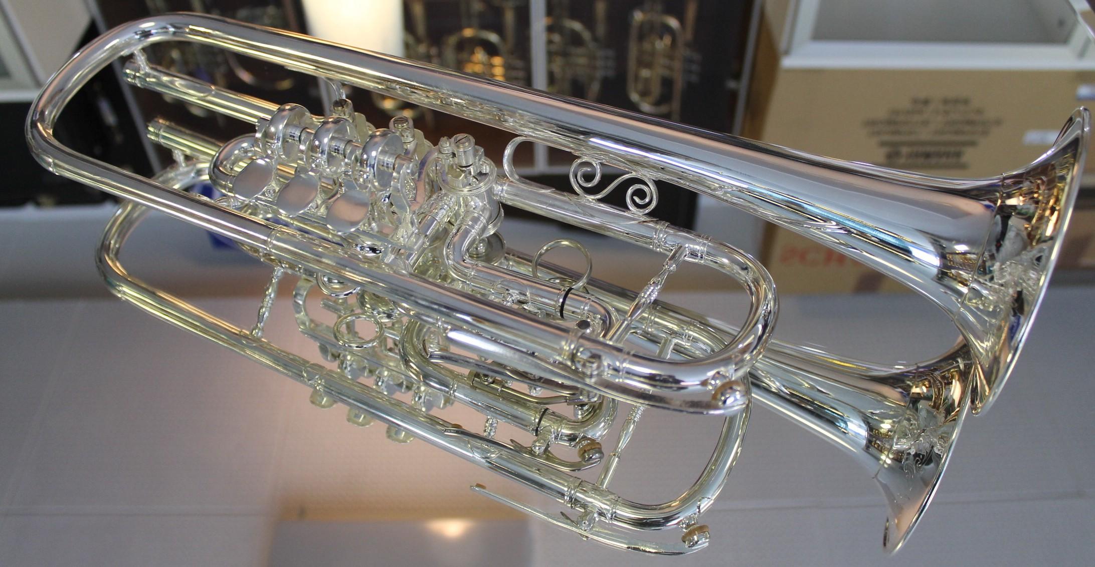 Euphonien Musikinstrumente Sammlung Hier Euphonium Silber Pumpventile Versilbert