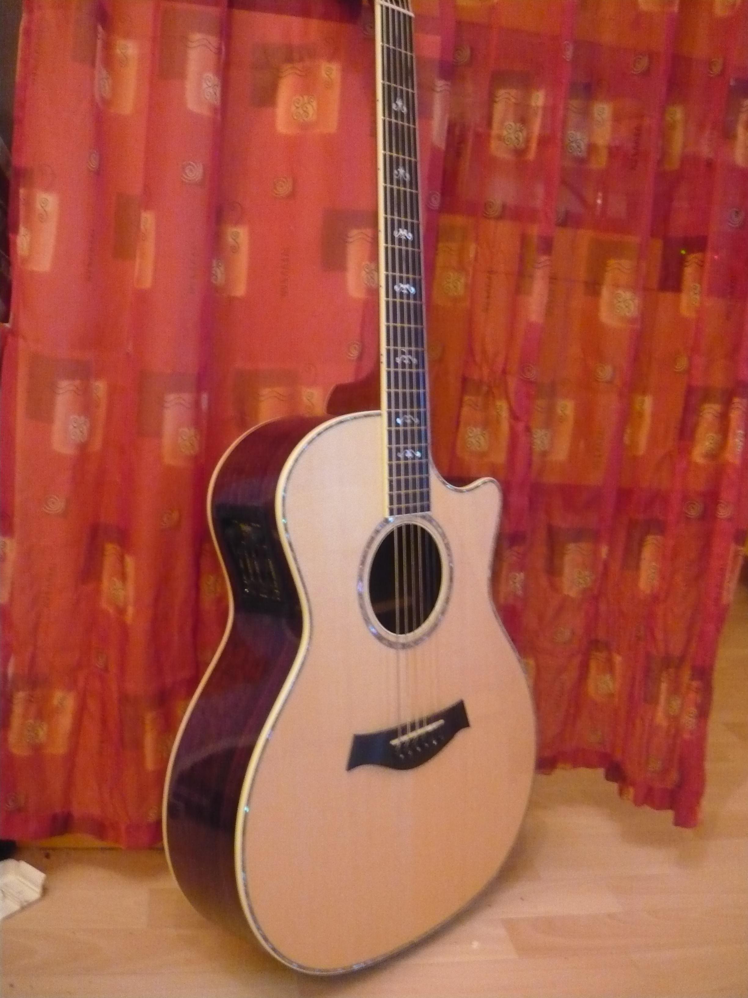 Top Taylor Akustikgitarre